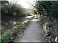 SO8602 : The Thames and Severn Way, north-west of Hope Mill Lane by Christine Johnstone