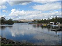 NS3882 : Loch Lomond by frank smith