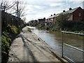 SO8304 : Stroudwater Navigation, west of Dudbridge Road by Christine Johnstone