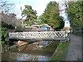 SO8104 : Swingbridge at Ryeford, Stroudwater Navigation by Christine Johnstone