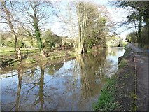 SO8104 : Reflections on the Stroudwater Navigation by Christine Johnstone