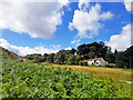 NZ9100 : Billira Cottage by Scott Robinson