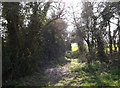 TM1854 : Footpath off the B1077 Helmingham Road by Adrian Cable
