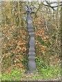 SN5117 : Sustrans Milepost at Botanic Gardens by Nigel Davies