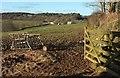 SX1260 : Towards Higher Hartswell Farm by Derek Harper