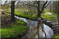 SU8555 : The Cove Brook, Farnborough by Alan Hunt