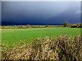 H5572 : Dark skies, Bracky by Kenneth  Allen