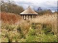 SD4214 : Rain Shelter, Martin Mere Wetland Centre by David Dixon