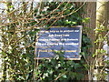 SP7701 : Sign  - help us protect from ash dieback by David Hawgood