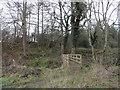 NZ0851 : Footbridge in Brownsbog Wood by Robert Graham