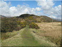 SH6214 : Not straight but level-Morfa Mawddach, Gwynedd by Martin Richard Phelan