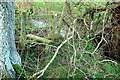 ST7257 : Obstructed stile near Double Hill by Derek Harper