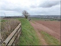 SS8502 : Footpath to Bradley Farm by David Smith