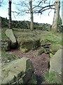 SE1239 : Exposed millstone grit rock, Broadstone Wood by Christine Johnstone