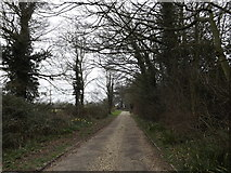 TM0857 : Footpath & entrance to St.Peter's Church by Adrian Cable