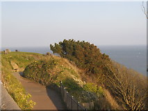 TR2135 : Path down to the sea front, Folkestone by David Howard
