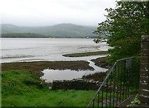 SH6216 : Saltmarsh, Mawddach estuary by Eirian Evans