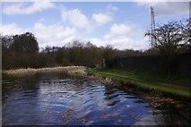 SK0305 : Wyrley & Essington Canal near Pelsall by Stephen McKay