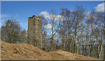 SK2563 : Reform Tower by Brian Frost