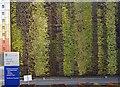SJ3690 : Teaching Hub Wall by Glyn Baker
