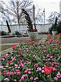 TQ3080 : Flower Bed, Victoria Embankment Gardens, London WC2 by Christine Matthews