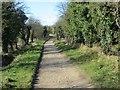 SU2985 : First part of the Walk by Bill Nicholls