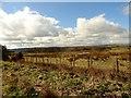 NZ2157 : Looking SW across Burdon Moor by Robert Graham
