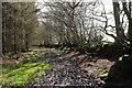 SS9928 : Bridleway from Post Lane by Derek Harper
