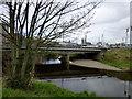 H4572 : Strule Bridge, Omagh by Kenneth  Allen