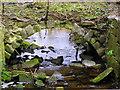 SE2635 : St Ann's Mills, Kirkstall, Leeds by Mark Stevenson