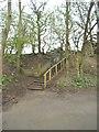 SO8794 : Bratch Path Steps by Gordon Griffiths