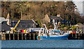 NM8529 : Alba Na Mara at Lighthouse Pier, Oban (2) by The Carlisle Kid