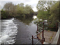 SX9192 : Head Weir on the River Exe above Millers Crossing, Exeter by Robin Stott