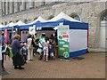 SP0686 : Birmingham Artsfest 2009 25 by Martin Richard Phelan