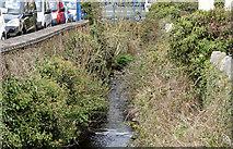 J4569 : The Glen River, Comber (April 2016) by Albert Bridge