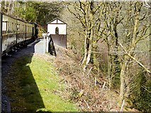 SN7078 : Vale of Rheidol Railway, Rheidol Falls Halt by David Dixon