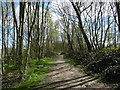 TQ4576 : The Green Chain Walk crossing East Wickham Open Space by Marathon