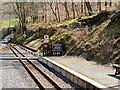 SN6878 : Vale of Rheidol Railway, Passing Loop at Aberffrwd by David Dixon