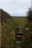 SW6523 : Stile on footpath from Gunwalloe to Chyvarloe by Christopher Hilton