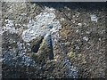 S7943 : Lichen and Bench Mark by kevin higgins