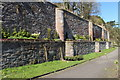 NS3823 : Hanging Garden, Auchincruive by Billy McCrorie