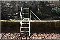 NS3923 : Steps to the River Ayr by Billy McCrorie