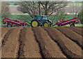SE9023 : Potato planting near Whitton by Paul Harrop