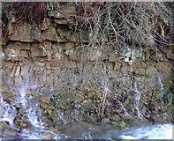 SE5584 : A natural spring by Brian Webster