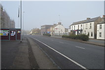 TL4658 : A misty Newmarket Rd by N Chadwick