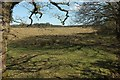 SS3902 : Little Claw Moor by Derek Harper
