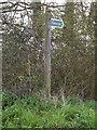 TM1453 : Footpath sign off Church lane by Adrian Cable