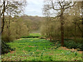 SE2712 : Looking Down Towards the Upper Lake at Bretton Country Park (YSP) by David Dixon