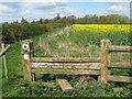 SP7479 : Kelmarsh over not through 1-Northants by Martin Richard Phelan