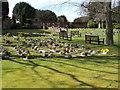 SZ1692 : Garden of Rest - Priory grounds by Betty Longbottom
